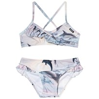 Molo Norma Bikini Dolphins Sunset Dolphins Sunset