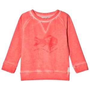 Image of ebbe Kids Beyond Sweater Tropical Coral 104 cm (1039021)