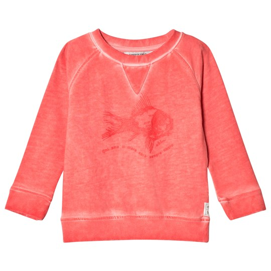 ebbe Kids Beyond Sweater Tropical Coral Tropical coral