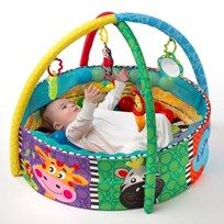 Playgro Ball Playnest Activity Gym Multi