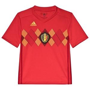 Image of Belgium National Football Team Belgium 2018 World Cup Home Replica Jersey 11-12 years (152 cm) (3125321525)