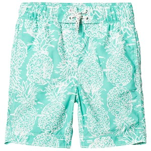 Image of GAP Pineapple Swim Trunks Deco Green L (9-10 år) (3031533567)
