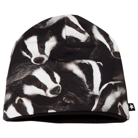 Molo Ned Baby Hat Badgers Badgers