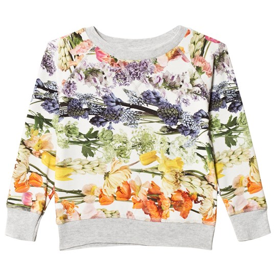 Molo Raewyn T-Shirt Rainbow Bloom Rainbow Bloom