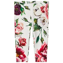 Dolce & Gabbana Pink and White Floral Interlock Leggings HAR40
