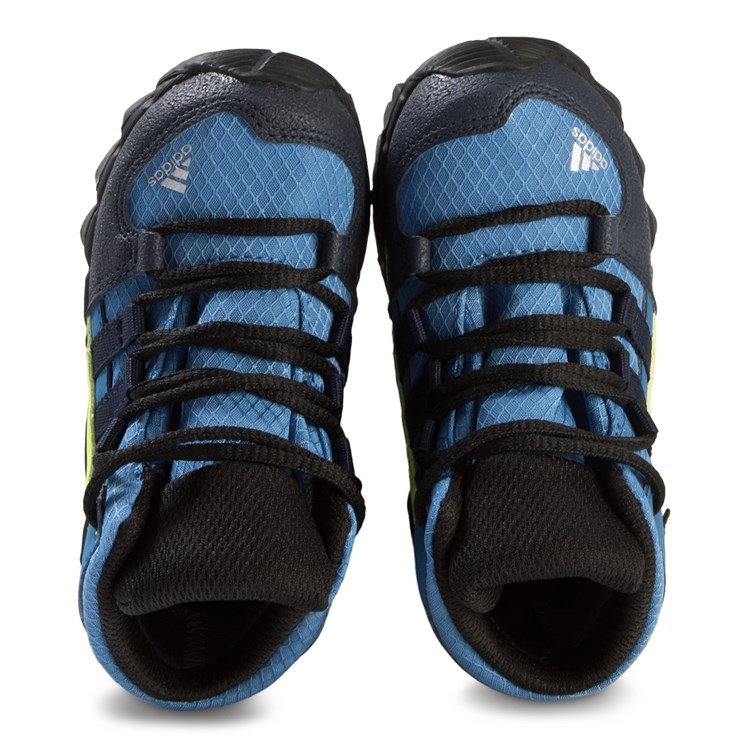 adidas Performance Terrex Mid GTX Shoes Blue and Green