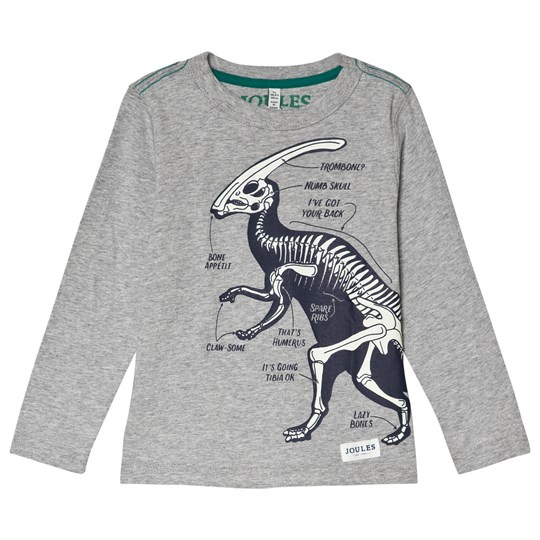 Tom Joule Grey Raymond Glow-in-the-Dark Dino Long Sleeve Tee GREY MARL DINO