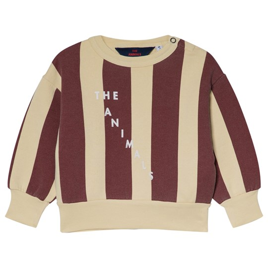 The Animals Observatory Bear Baby Sweatshirt Yellow Maroon Stripe Yellow Maroon Stripes