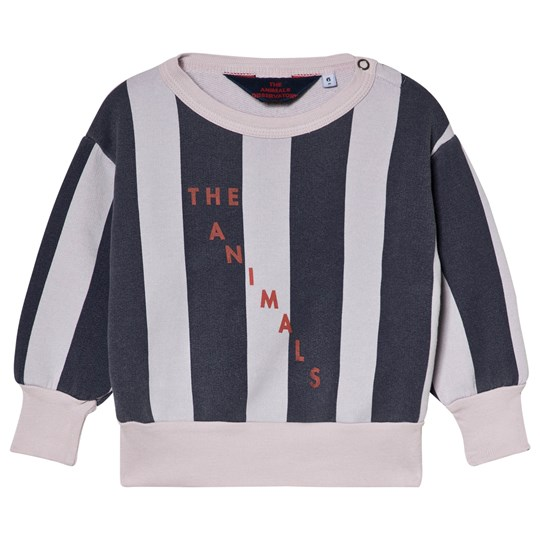 The Animals Observatory Bear Baby Sweatshirt Purple Navy Stripes Purple Navy Stripes