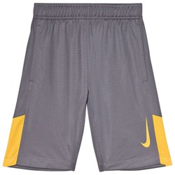 NIKE Grey Accelerate Dry Training Shorts