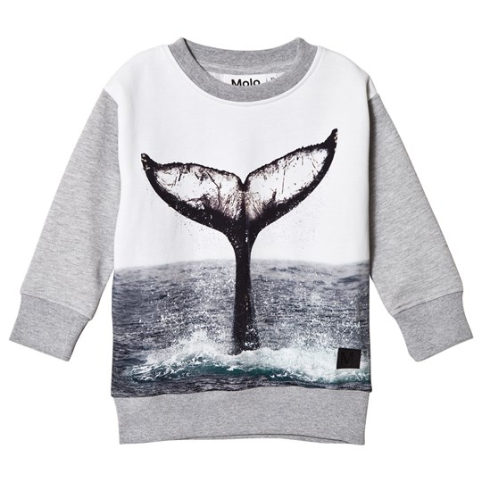 Molo Morell Sweatshirt Whale Tail Whale Tail