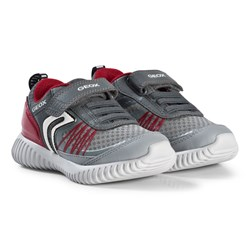 Geox Gray and Red Waviness Flexible Sneakers