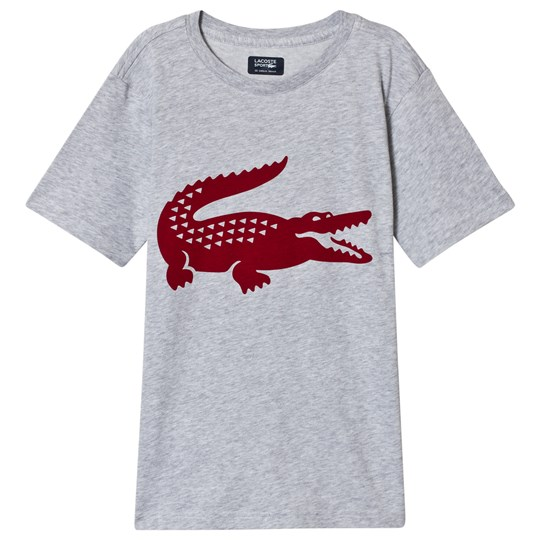 Lacoste T-Shirt Grey/Red 0X0