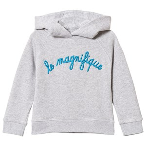 Image of Maison Labiche Grey Le Magnifique Hoodie 10 years (3056084169)