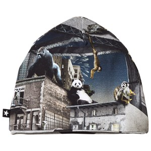 Molo Ned Baby Hat Zoo Rebellion 0-3 mdr