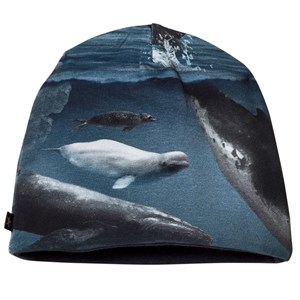 Molo Ned Baby Hat Arctic Landscape 3-6 mdr