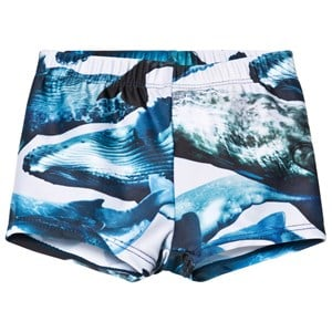 Image of Molo Nansen Swim Pants Whales 56/62 cm (1240462)