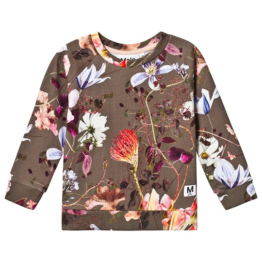 Molo Marina Sweatshirt Evergreen Flowers Evergreen Flowers