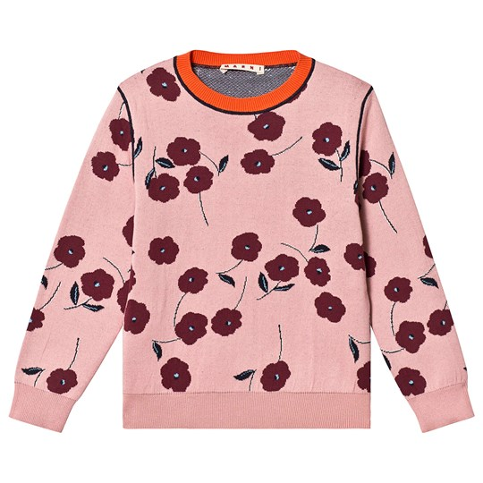 Marni Pink Cherries Knitted Sweater 0M313