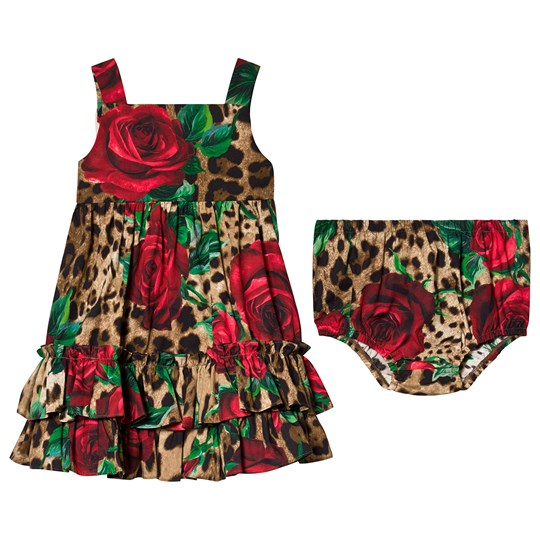 Dolce & Gabbana Leopard and Rose Print Dress Bloomers HKIRS