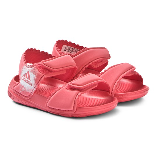 adidas Performance Altaswim Sandals Red CORE PINK S17/FTWR WHITE/FTWR WHITE