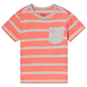 Image of Hatley Coral Stripes Tee 3 years (3125278041)