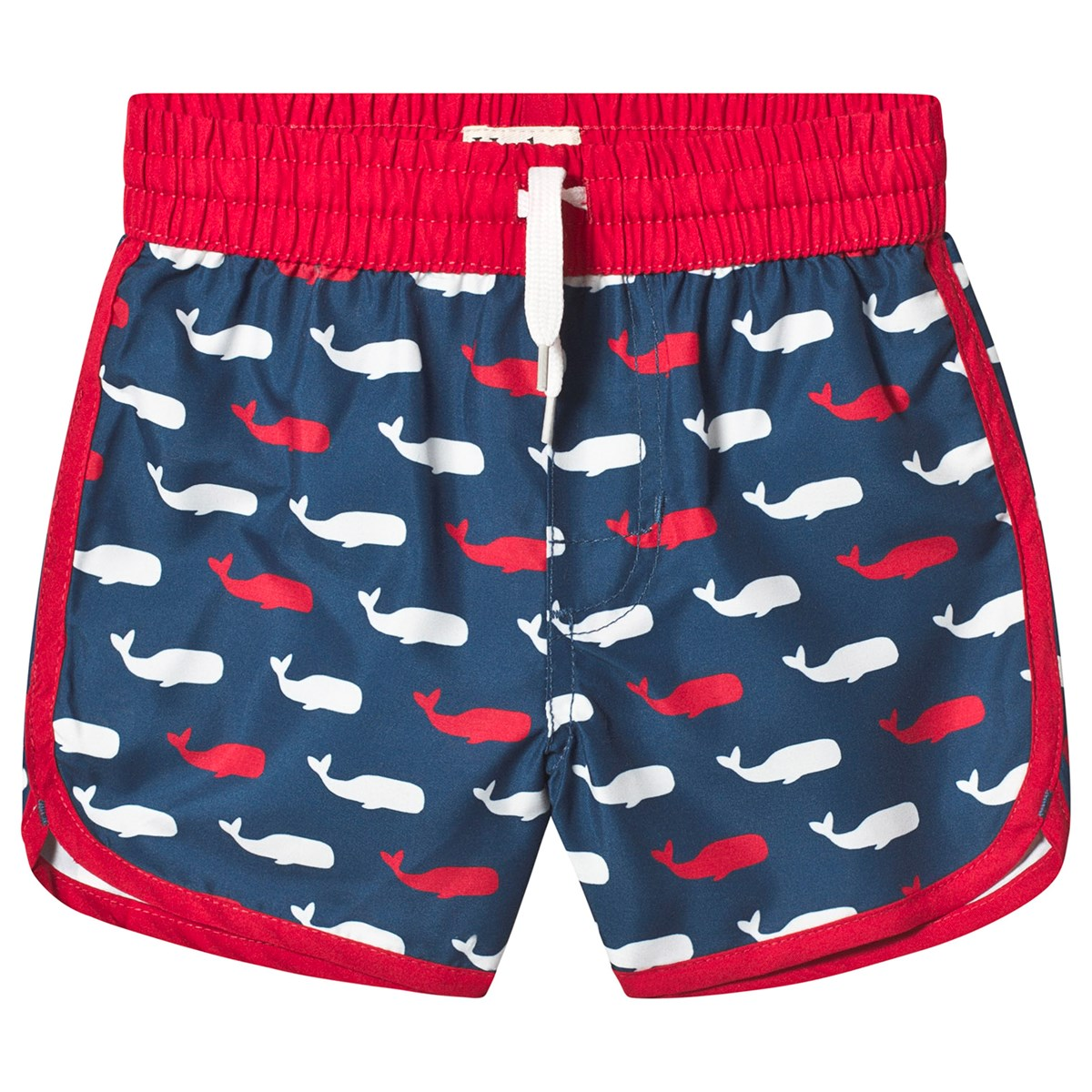 40a306a9f5722 Hatley - Navy Whale Pod Swim Trunks - Babyshop.com