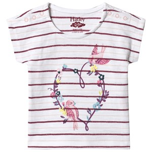 Image of Hatley White Lovely Birds Tee 6-9 months (1223924)