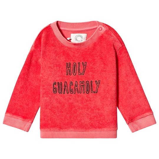 Sproet & Sprout Holy Guacamoly Sweatshirt Red 063