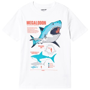 Image of Lands' End Megalodon Tee White 4 years (3132748325)
