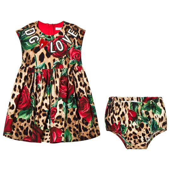 Dolce & Gabbana Leopard and Rose D&G Loves Jersey Dress HKIRS