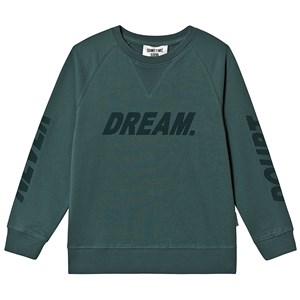 Image of Sometime Soon Dream Sweater Green 6 år (3137429467)