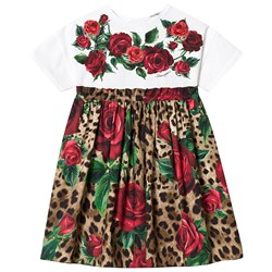 Dolce & Gabbana Leopard and Rose Print Jersey and Woven Dress