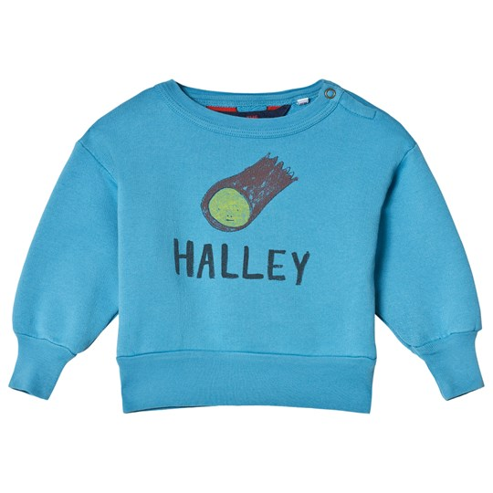 The Animals Observatory Bear Baby Sweatshirt Blue Halley BLUE HALLEY