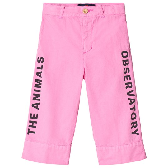 The Animals Observatory Colt Pants Fuchsia The Animals FUCHSIA THE ANIMALS