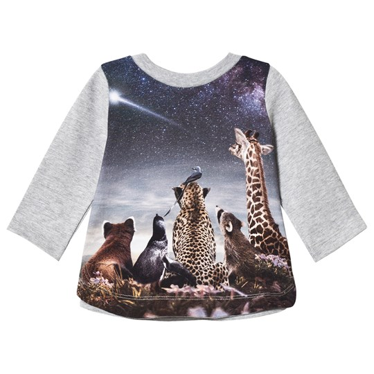 Molo Eline T-Shirt Wish Upon a Star Wish upon a Star baby