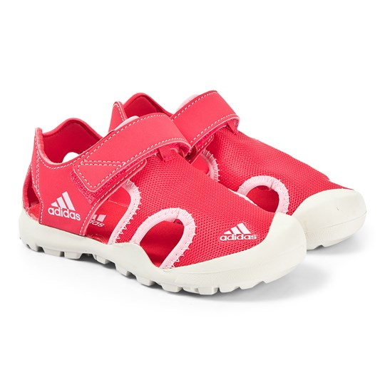 adidas Performance Captain Toey Sandaler Ægte Pink active pink/true pink/raw white