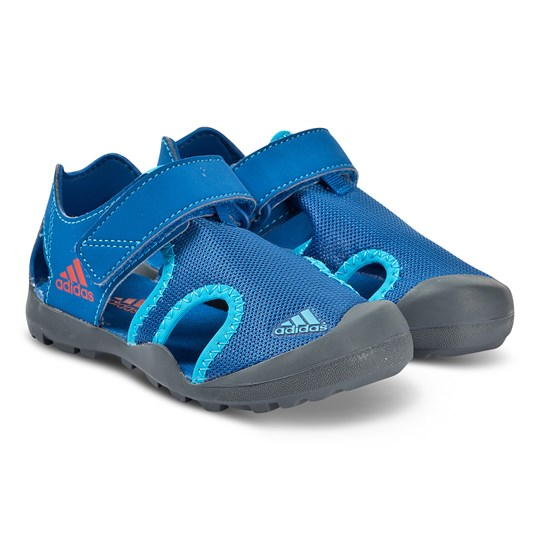 adidas Performance Blue Captain Toey Velcro Shoe blue beauty/grey six/active red