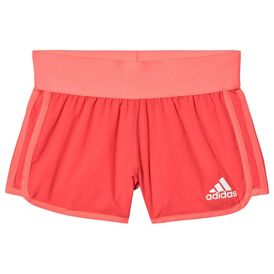 adidas Performance Training Shorts Coral shock red/white