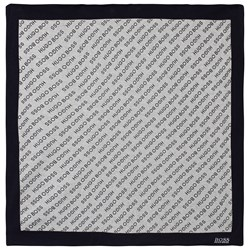 BOSS Branded Blanket Navy and Grey