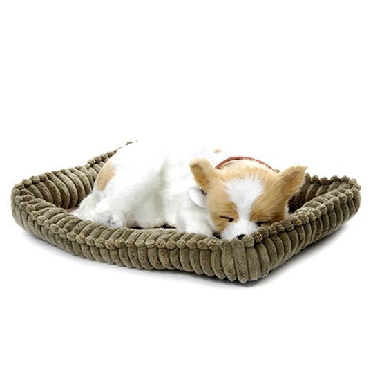 Perfect Petzzz Chihuahua Realistic Soft Toy