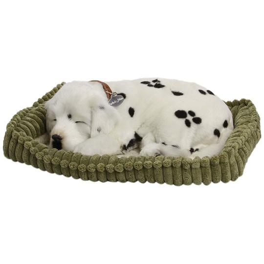 Perfect Petzzz Dalmatian Realistic Soft Toy