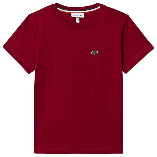 Lacoste Logo Tee Bordeaux Red 476