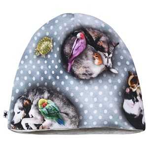 Image of Molo Nedine Hat Pets n' Dots 3-6 mdr (1407049)