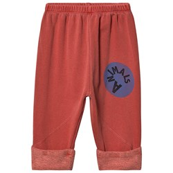 The Animals Observatory Magpie Baby Pants Red Animals