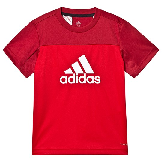 adidas Performance Logo T-Shirt Red scarlet/active maroon/white
