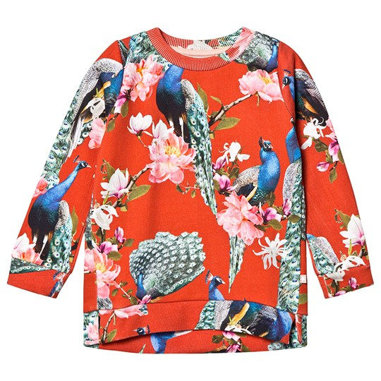 Molo Marlee Sweatshirt Red Peacock Red Peacock