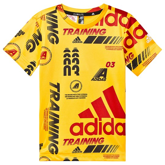 adidas Performance Bold Training T-Shirt Yellow active gold