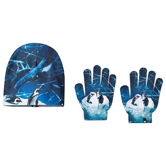 Molo Kaya Beanie and Gloves Set By the Frozen Ocean