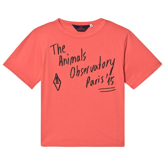The Animals Observatory Rooster Oversize T-Shirt Röd/The Animals RED THE ANIMALS